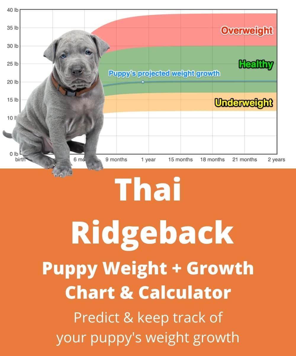 My Ahn Chart : chart, Weight+Growth, Chart, Heavy, Weigh?, Goody