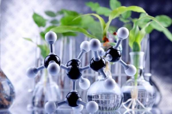 Dampak Bioteknologi