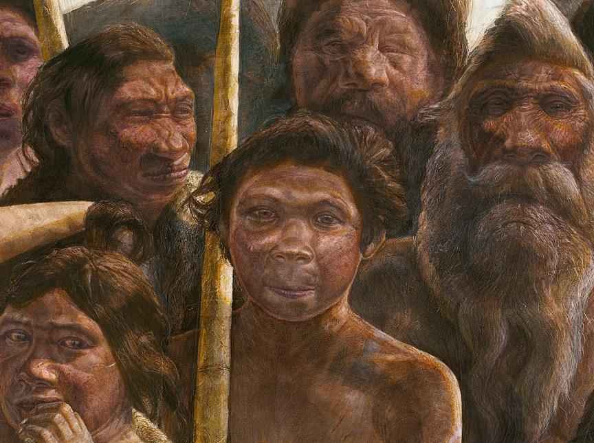 Jenis Jenis Manusia Purba Ciri Ciri Sejarah Gambar Lengkap