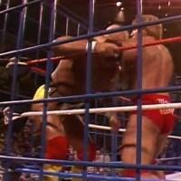 TODAY IN PRO WRESTLING HISTORY... DEC 14th: Hogan vs. Orndorff - The Final Battle