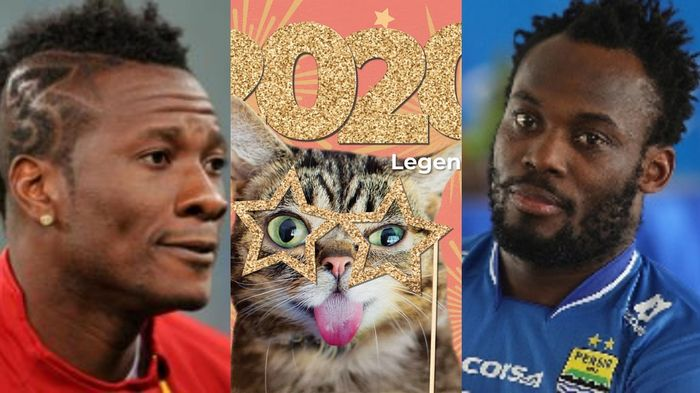 Meet Lil Bub; The Celebrity Cat With More Influence & Followers Than Asamoah Gyan & Michael Essien