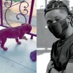 VIDEO: Kuami Eugene Announces The Death Of His Celebrity Dog On Instagram