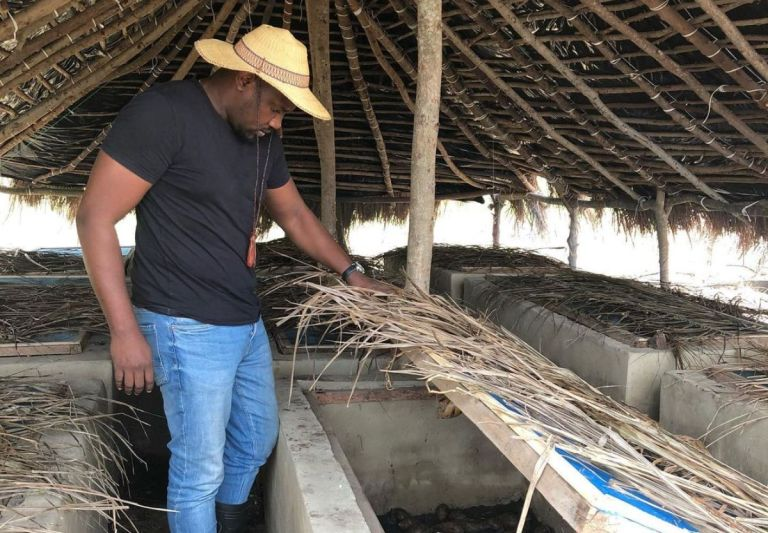 John Dumelo Is Back To Default Settings - Says He's Going Back To Farming After Losing To Lydia Alhassan