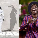 The Artwork For Stonebwoy's '1GAD' Song Is Better Than The Song Itself