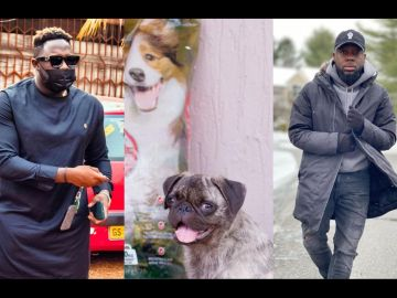Medikal's Dog, AMG El Chapo, Bags Ambassadorial Deal While Teephlow Is Still Struggling For A Hit Song