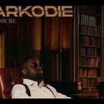 "VIDEO: Sarkodie Announces New Album Titled ""No Pressure"""