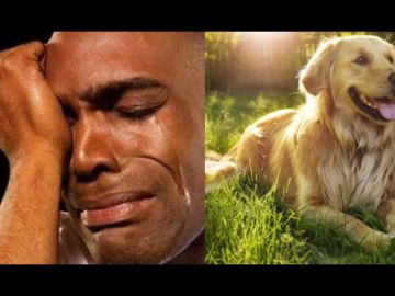 Nigerian Man Catches His Fiance Sleeping With His Dog A Few Weeks To Their Wedding