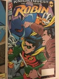 Knightquest Robin