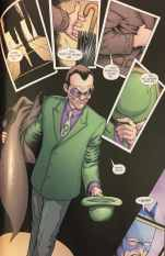 The Riddler Cat and the Bat