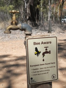 Warning warning! This warning is serious!