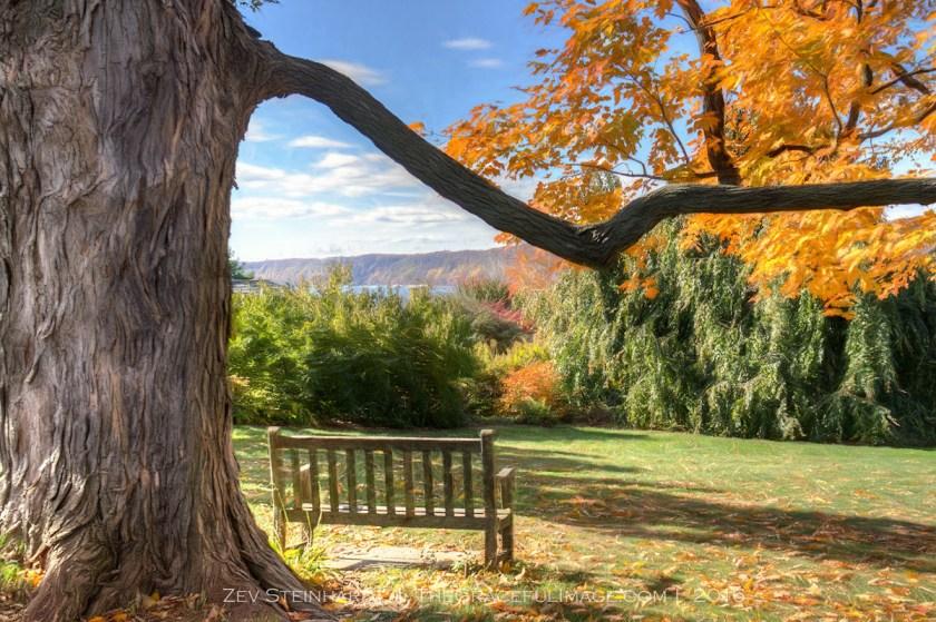 Catching Up – Part I – Fall Foliage