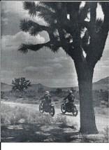 1962 Greenhorn b4 Max Bubeck, desert view