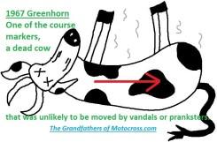 1967 C7 Greenhorn dead cow
