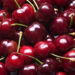 BingCherries-58f81e805f9b581d59cc15d9