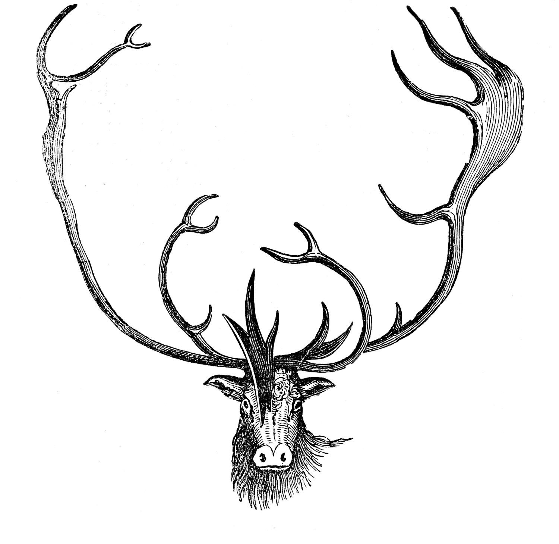 Vintage Animal Clip Art