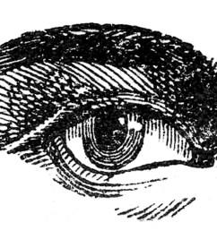 antique images human eye [ 1050 x 784 Pixel ]