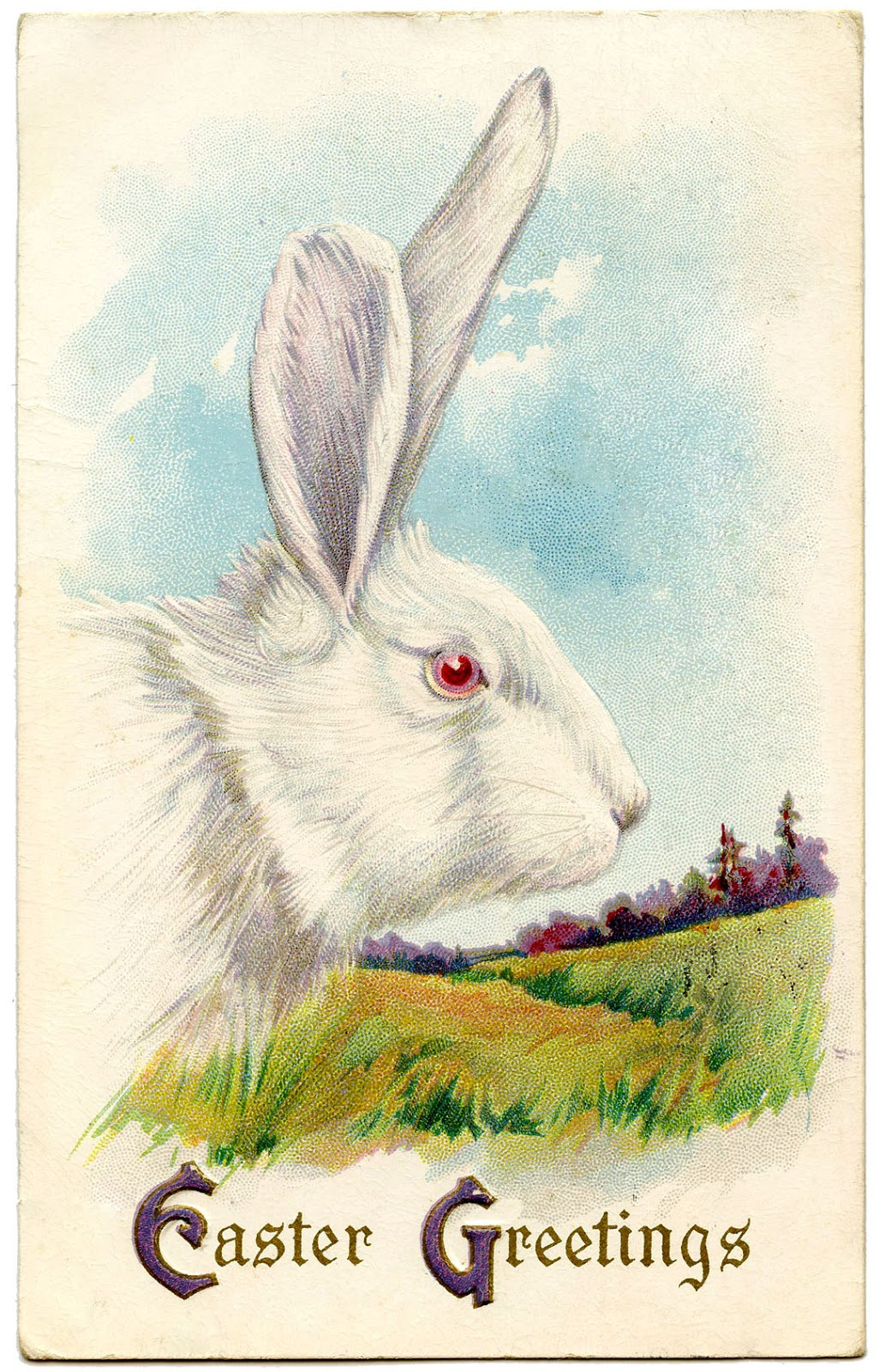 Royalty Free Image  Easter Bunny  The Graphics Fairy