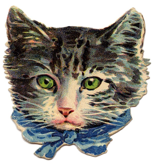 Vintage - Kitty Cat With Green Eyes Graphics Fairy