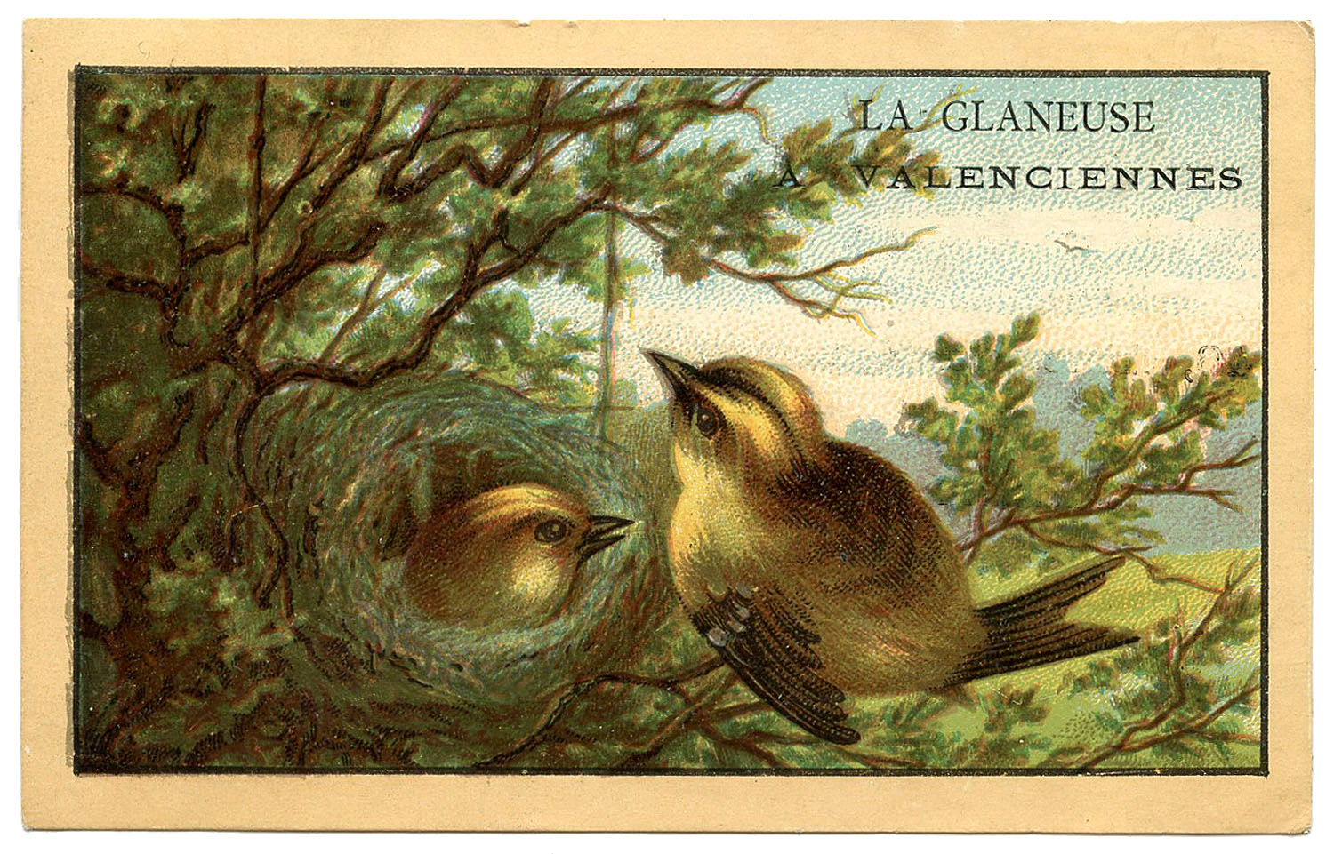 Vintage French Ad Cute Birds With Nest The Graphics Fairy