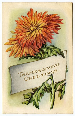 Animal Print Wallpaper For Home Vintage Thanksgiving Clip Art Mums Placecard The