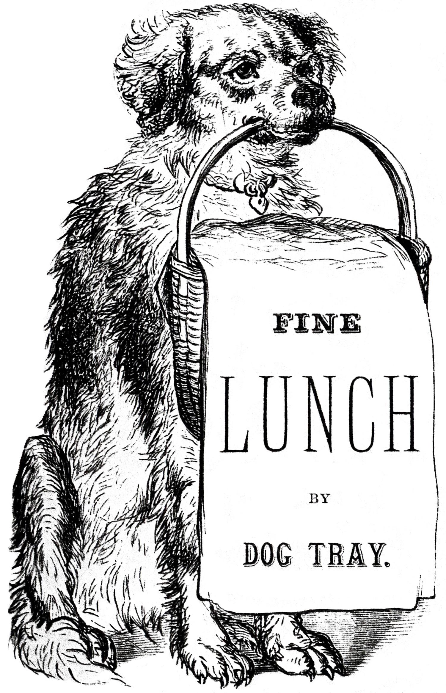 Vintage Dog Images