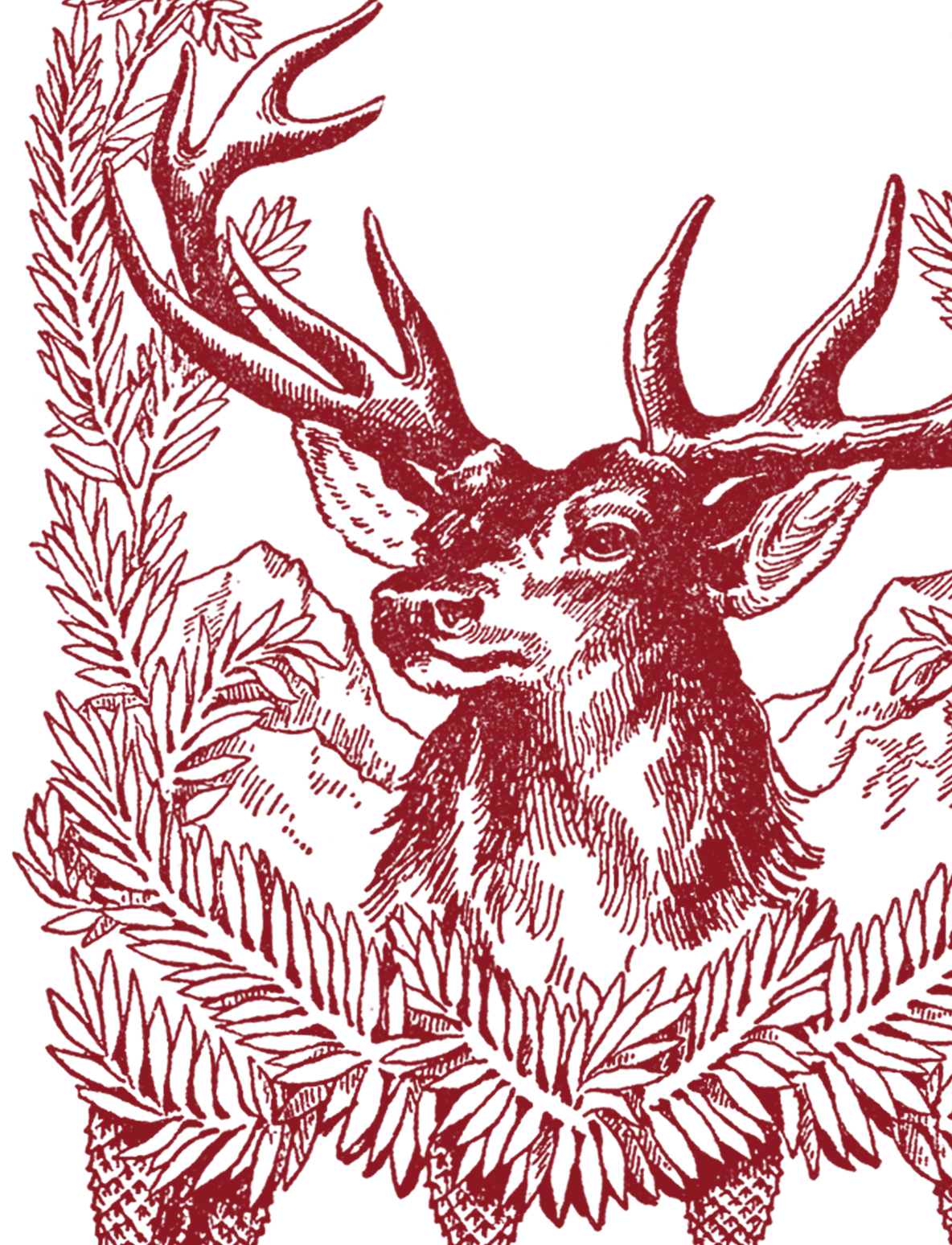 Free Vintage Christmas Pictures Deer The Graphics Fairy