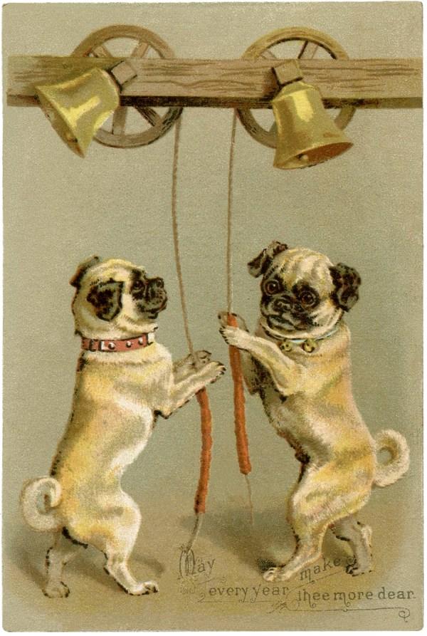 Pug Stock Illustration - Cute Graphics Fairy