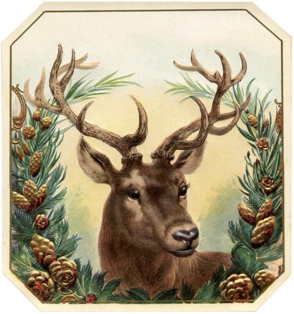 Free Vintage Christmas Deer - Graphics Fairy