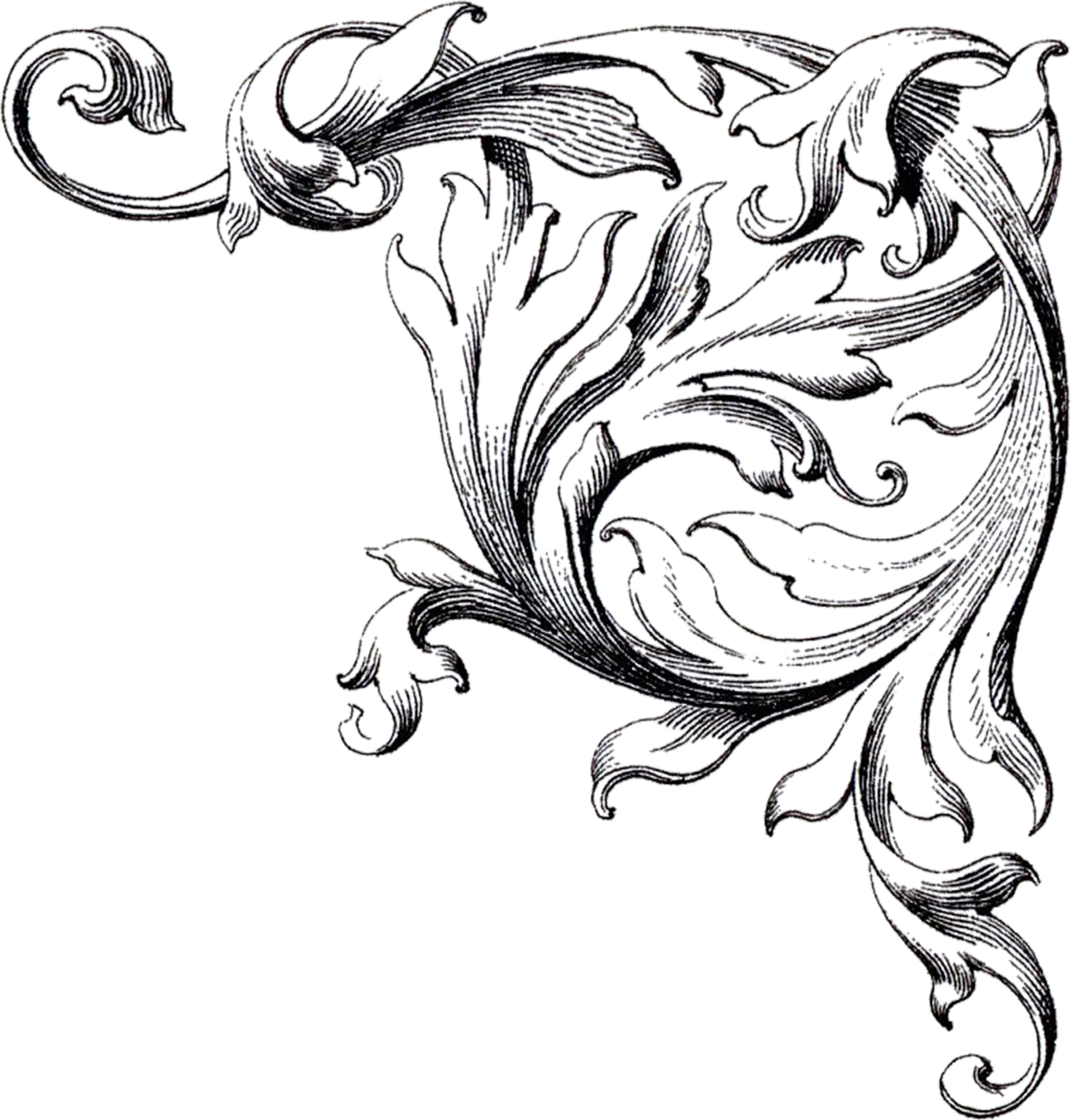 hight resolution of these are some more gorgeous free wedding clip art scroll images make sure you enlarge them to see the incredible detail of these
