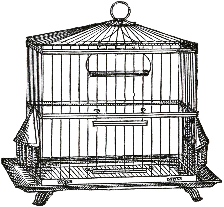 Vintage Wire Bird Cage Image