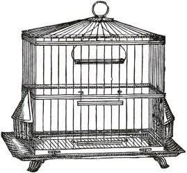 cage bird wire clip graphics birds birdcage fairy metal antique decorative cages printable thegraphicsfairy square garden ephemera picmonkey collage digital