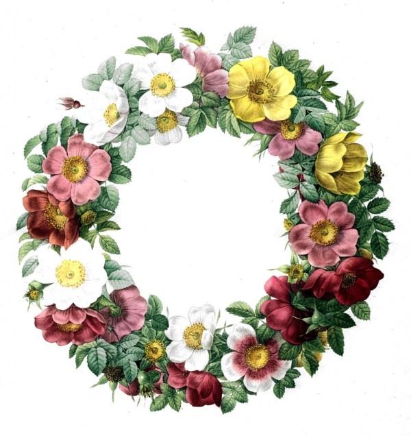 favorite free vintage flower
