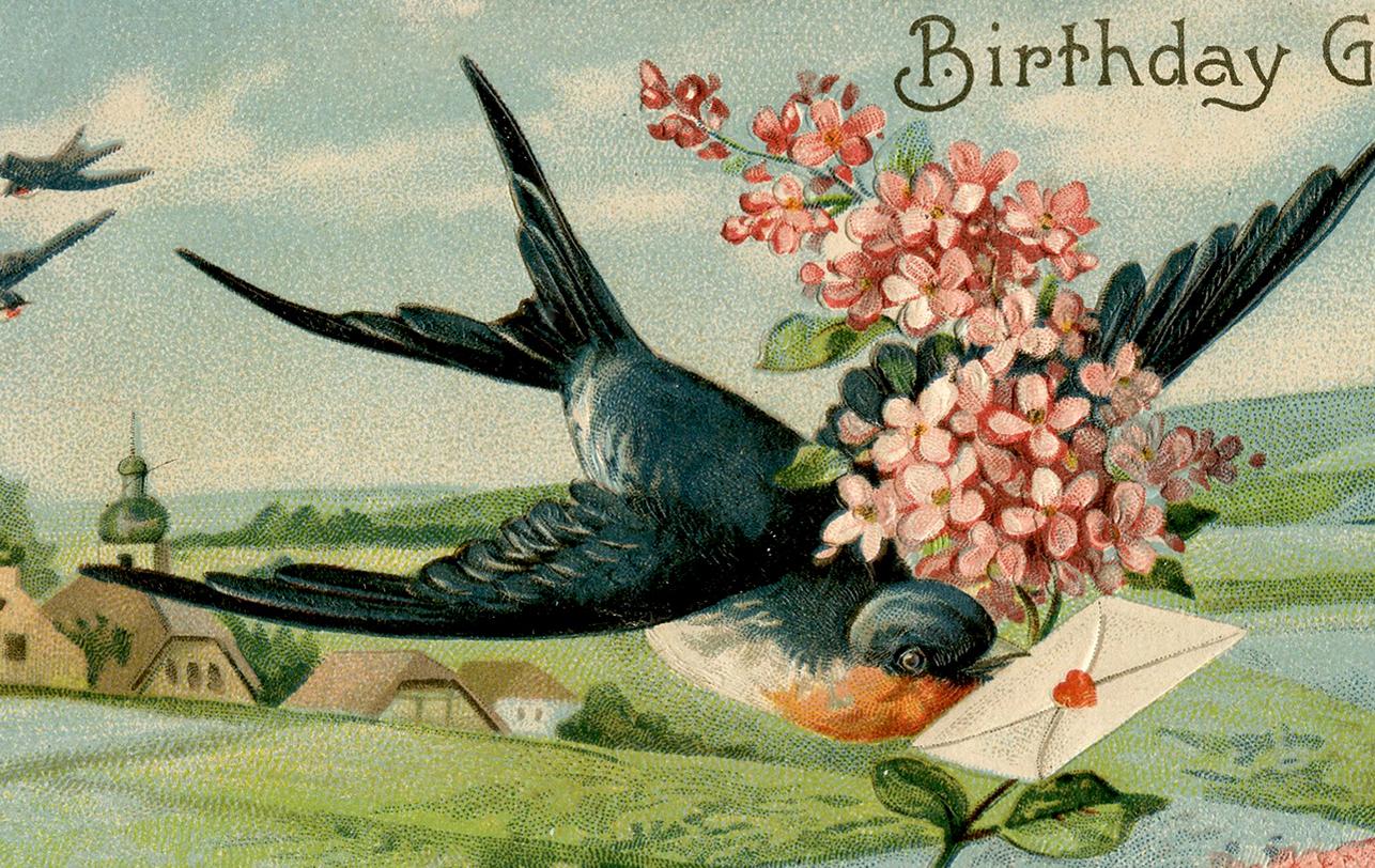Birthday Swallow Image Extra Pretty The Graphics Fairy