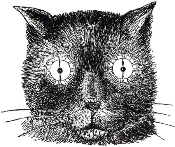 Steampunk Cat Illustration