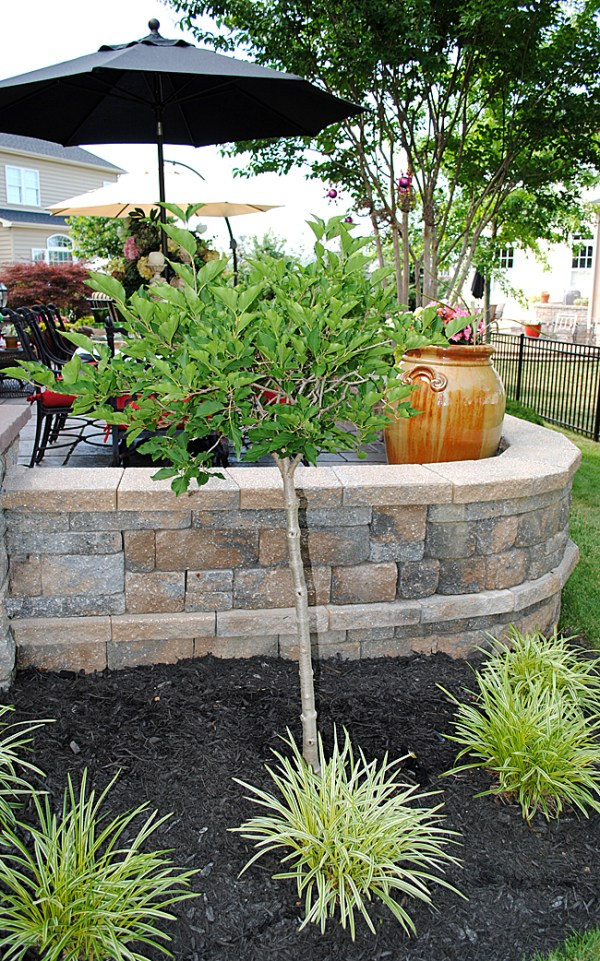 8 great ideas backyard landscaping