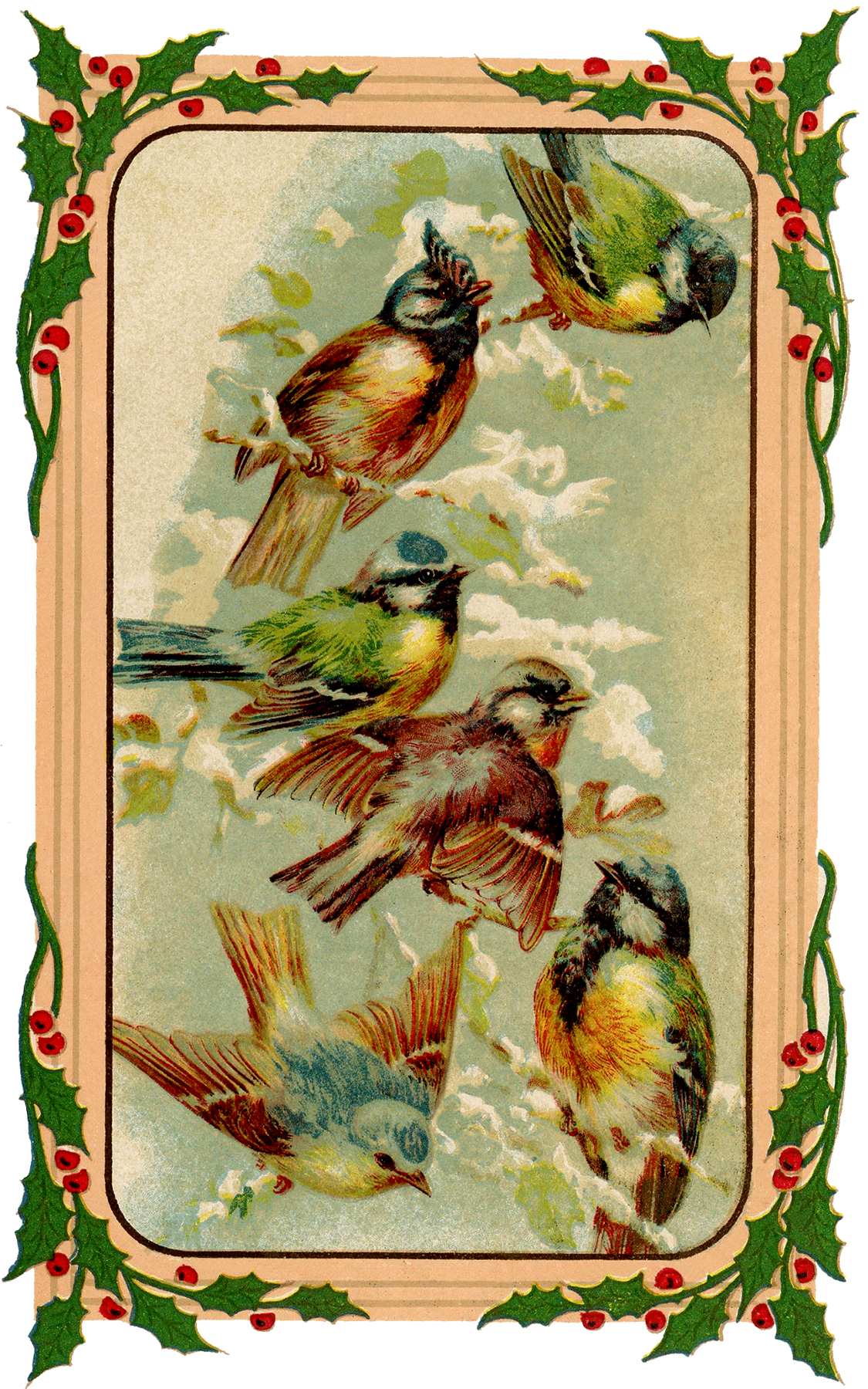 Holiday Birds Image Sweet The Graphics Fairy
