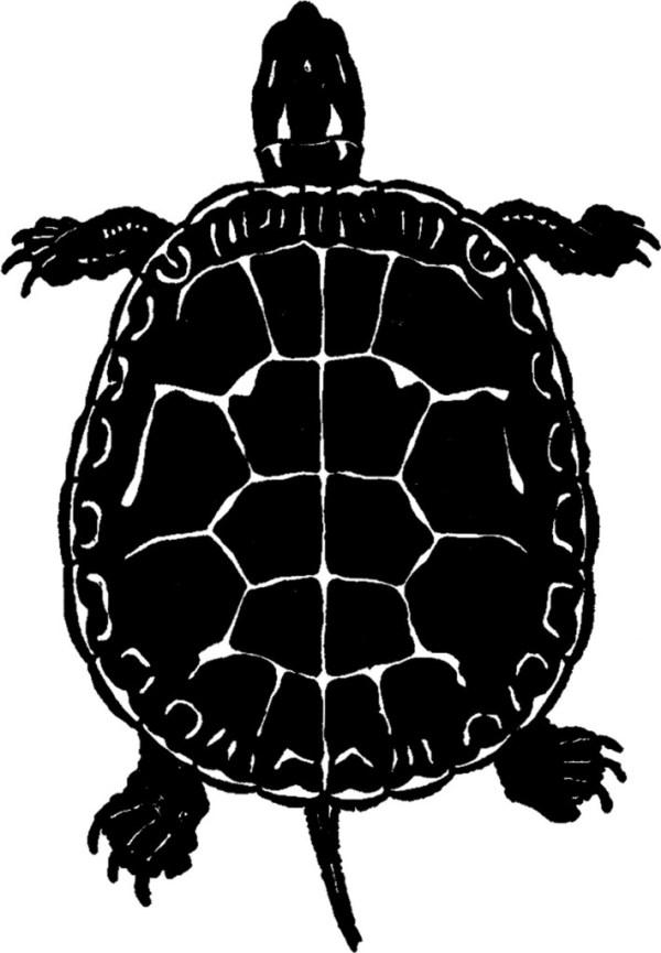 public domain turtle - silhouette