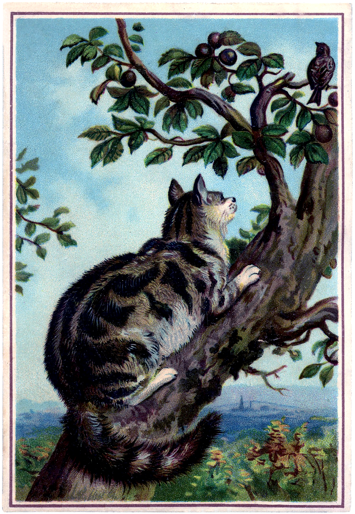 Vintage Cat In Tree Image With Bird The Graphics Fairy
