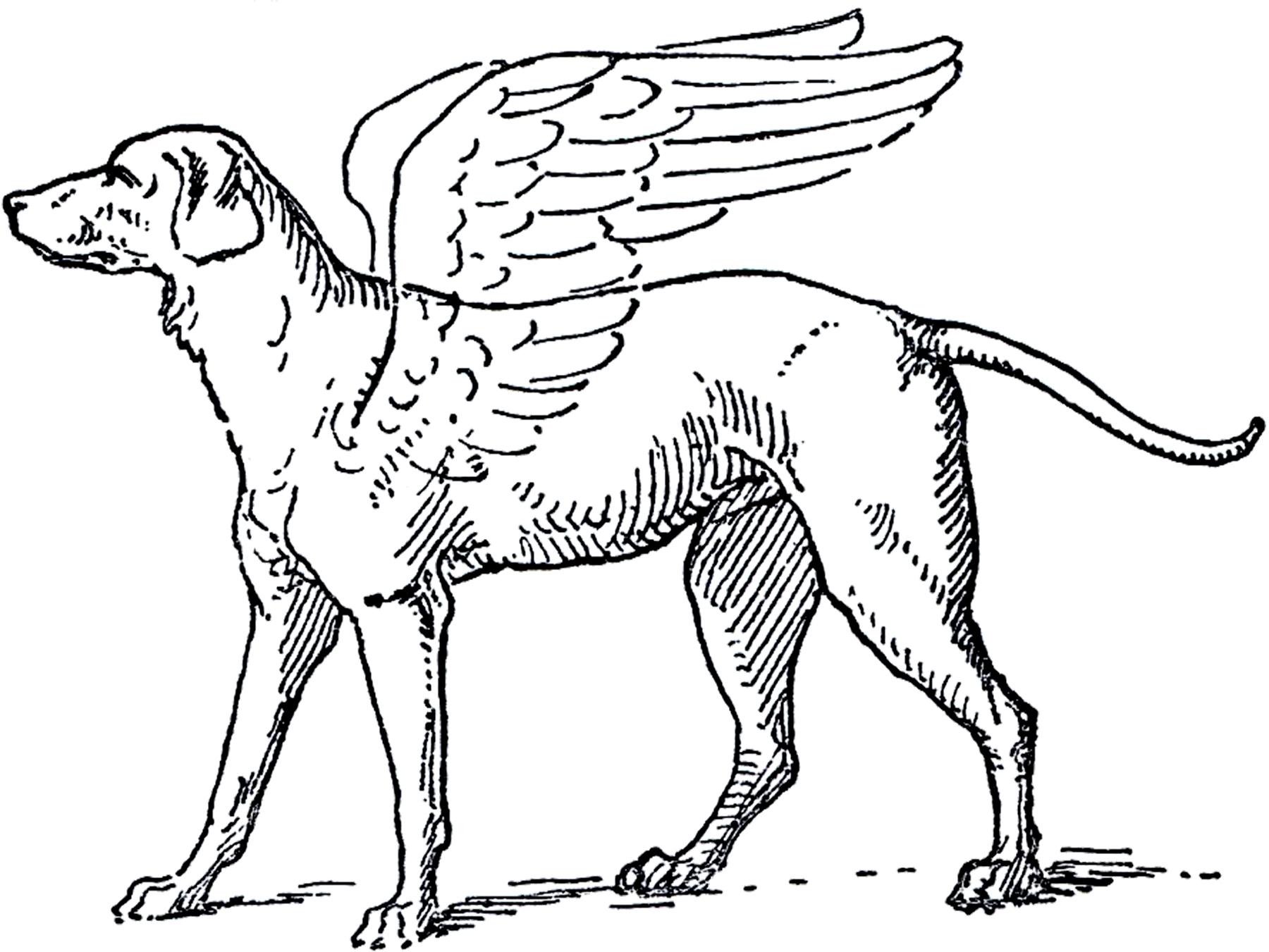 Free Angel Dog Clip Art Image