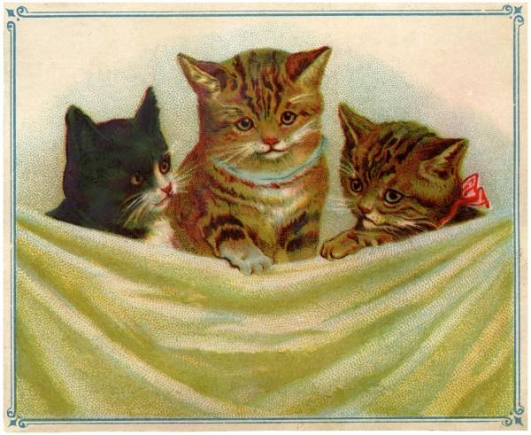 Vintage Kitties Clip Art - Graphics Fairy