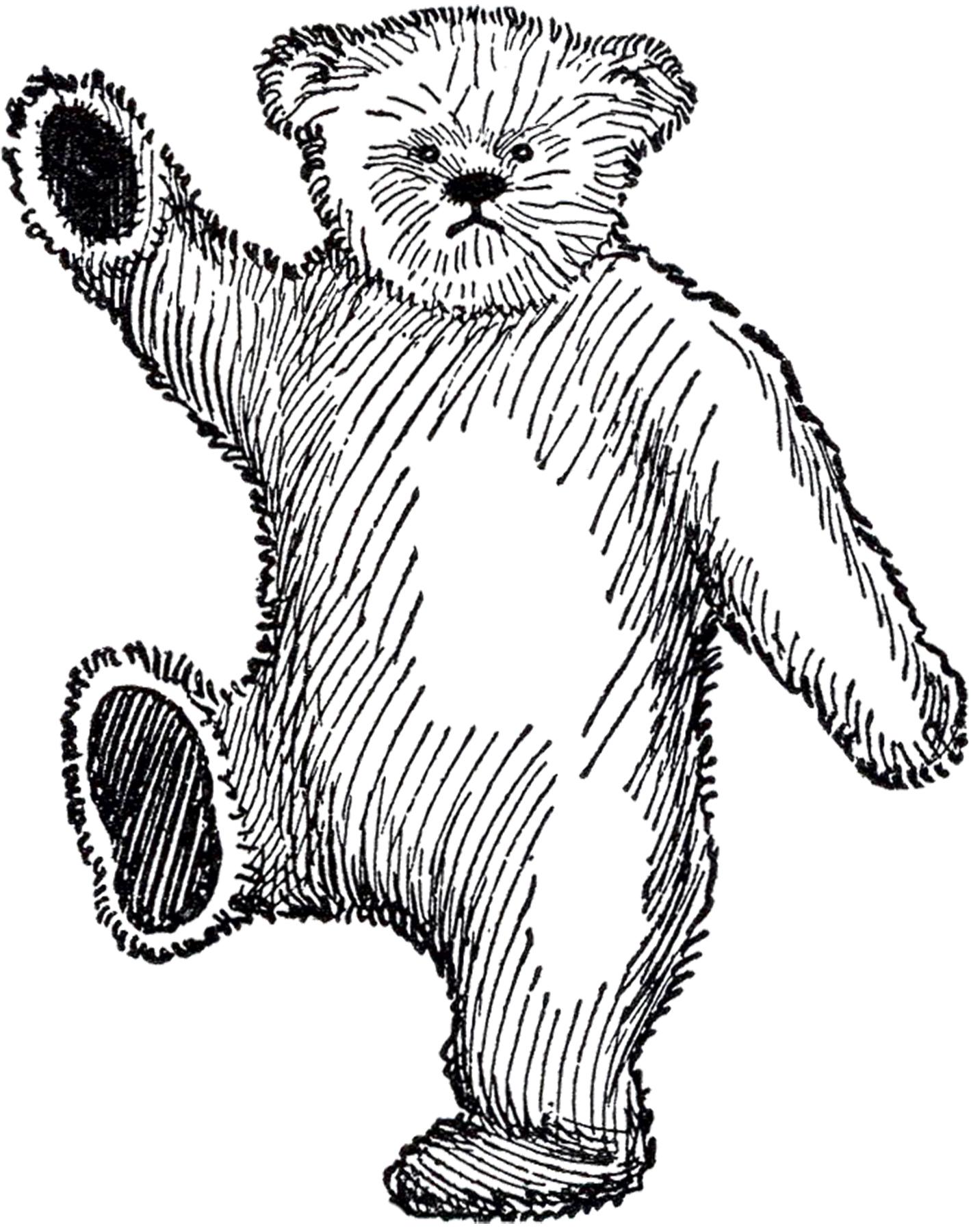 Public Domain Teddy Bear Image