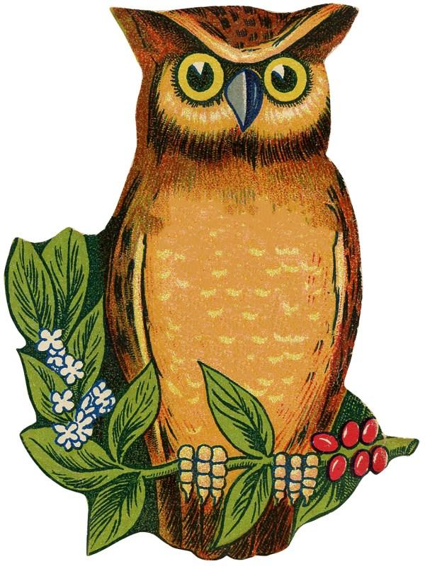 3 Cutest Vintage Owl - Graphics Fairy