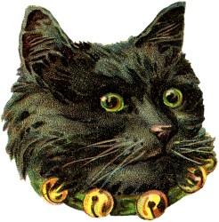 cat halloween fairy clipart cats victorian graphics clip antique retro cards scrap kitty christmas die graphicsfairy thegraphicsfairy drawings october