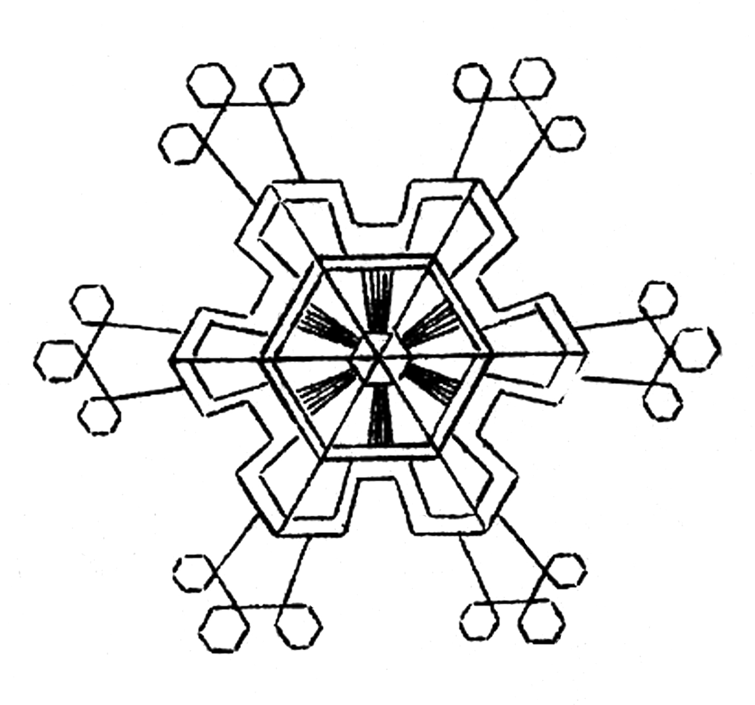 12 Snowflake Images