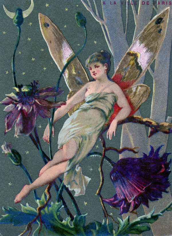 Vintage Graphic - Fairy In Moonlight Graphics