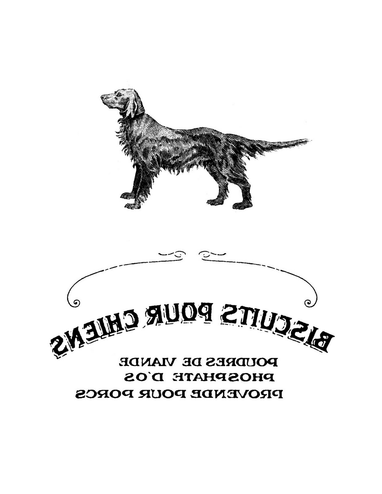 French Dog Biscuit Label