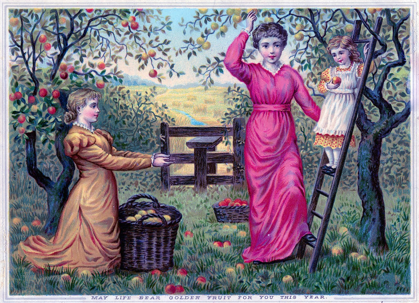 Victorian Graphic Apple Harvest The Graphics Fairy