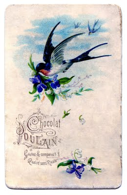Vintage Image Flying Swallow With Violets The Graphics