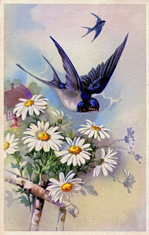 Vintage Clip Art - Swallow With Daisies Graphics Fairy