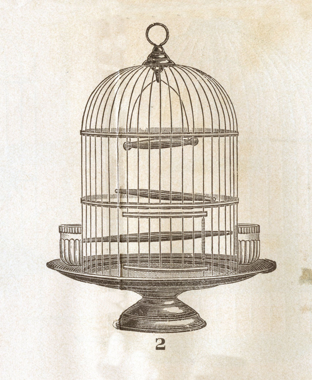 Vintage Clip Art  Victorian Bird Cage  The Graphics Fairy